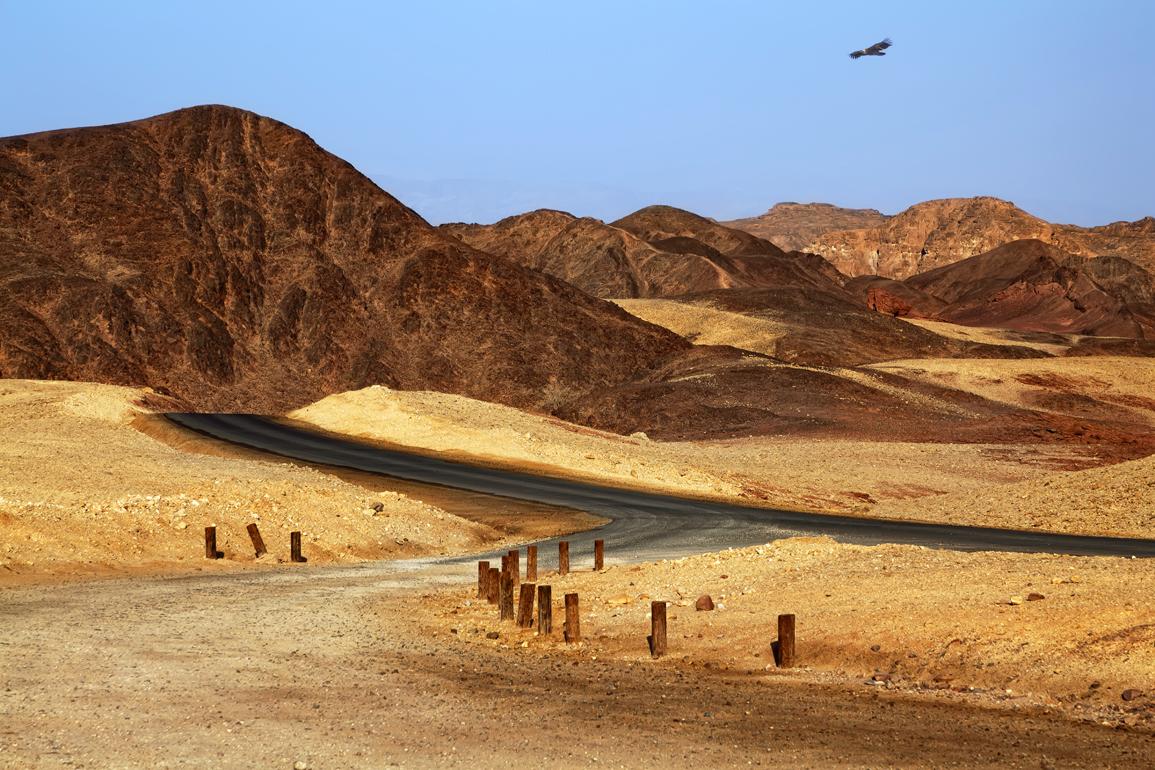 Desertroad1