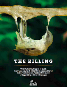 The Killing Cover
