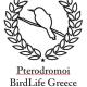 Pterodromoi Team Logo
