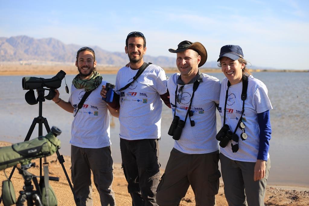 Israeli Terns