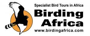 Birding Africa logo