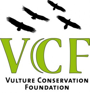 logo_vcf