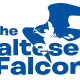 THE MALTESE FALCONS LOGO