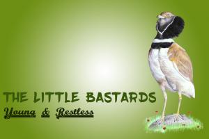 Little bastards logo
