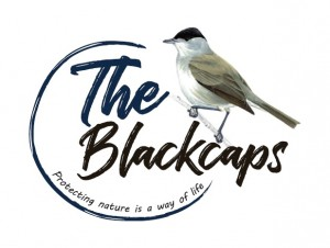Blackcaps logo