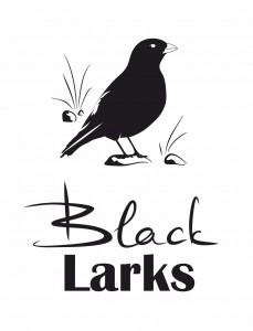black_larks_logo